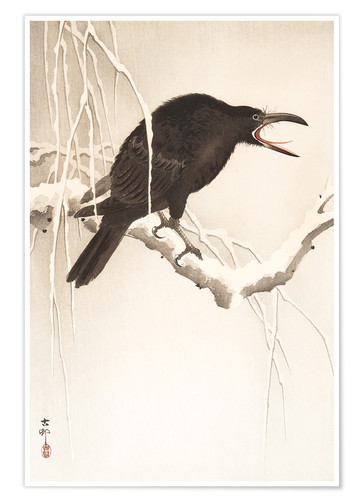 Premium poster Blackbird in snow