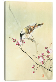 Canvas print  Small Bird and Blossoms - Ohara Koson