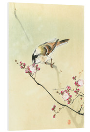 Foam board print  Small Bird and Blossoms - Ohara Koson