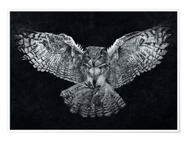 Poster Owl 1