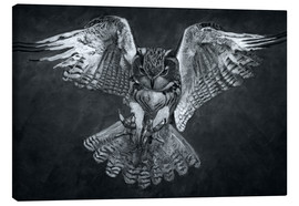 Canvas print  Owl 2 - Christian Klute