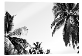 Acrylic print  Under palm trees - Finlay and Noa