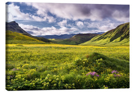 Canvas  Green landscape on Iceland - Dennis Fischer
