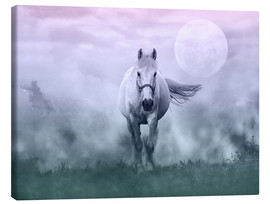 Canvas  Dreaming Horse - Andrea Haase
