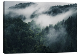 Canvas print  Mystic forests in fog - Oliver Henze