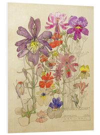 Foam board print  Butterfly Flower, Bowling - Charles Rennie Mackintosh