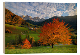 Wood print  Funes Valley in autumn, Dolomites, South Tyrol, Italy - Roberto Sysa Moiola