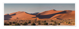 Poster  Dune landscape in the Sossusvlei, Namibia - Circumnavigation