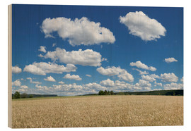 Wood print  Summer sky over cereal field - Markus Lange