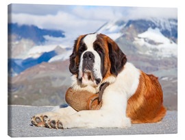 Canvas  Saint Bernard Rescue Dog
