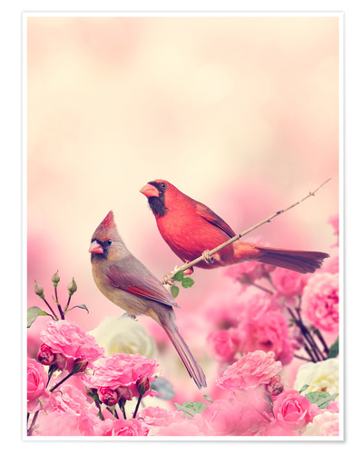 Premium poster Red cardinal in sea of flowers
