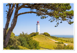 Premium poster  lighthouse Dornbusch at Hiddensee