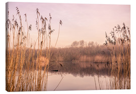 Canvas print  Pastel colored lake