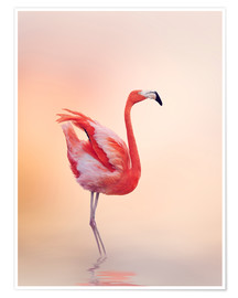 Premium poster  Flamingo Feeling