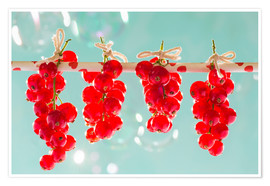 Premium poster  Red currants full - K&L Food Style