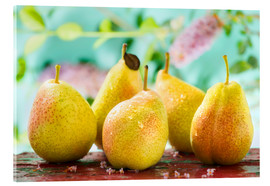 Acrylic glass  Five pears - K&L Food Style