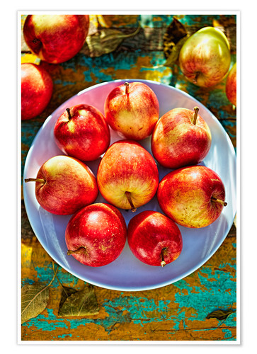 Premium poster Autumn apples