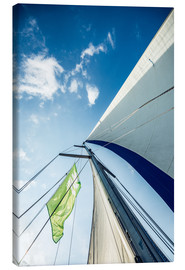 Canvas print  Sails in the wind - Hannes Cmarits