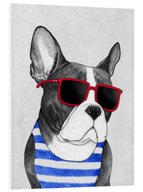 Forex  Frenchie summer style - Barruf