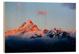 Wood print  Schreckhorn alpen glow at sunset  View from First, Grindelwald, Switzerland  - Peter Wey