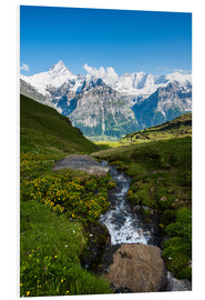 Foam board print  Mountain panorama with Schreckhorn and Fiescherhorn  View from First, Grindelwald, Switzerland - Peter Wey