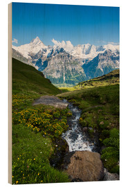 Wood print  Mountain panorama with Schreckhorn and Fiescherhorn  View from First, Grindelwald, Switzerland - Peter Wey