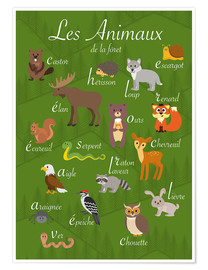 Premium poster  Forest animals - French - Kidz Collection
