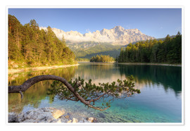 Premium poster  At the Eibsee in Bavaria - Michael Valjak