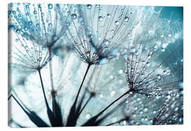 Canvas  Dandelion blue art - Julia Delgado