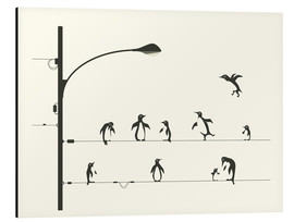 Aluminium print  PENGUINS ON A WIRE - Jazzberry Blue