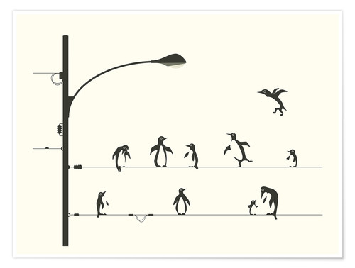 Premium poster PENGUINS ON A WIRE