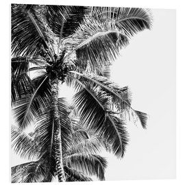 Foam board print  High palms on a tropical beach