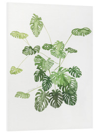 Foam board print  Monstera - Jennifer McLennan
