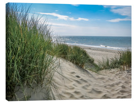 Canvas print  Summery dune landscape in Holland - Susanne Herppich