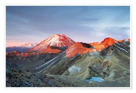 Premium poster  First light on the volcano, Tongariro crossing, New Zealand - Matteo Colombo
