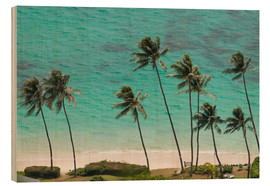 Wood print  Palm Trees in front of the turquoise Ocean - Markus Ulrich