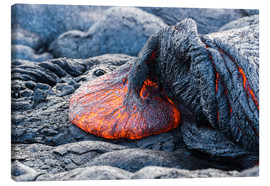 Canvas print  Fresh Lava Flow on Big Island, Hawaii - Markus Ulrich