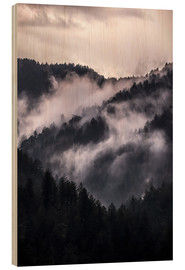 Wood  Smoky mountains - Jaroslaw Blaminsky