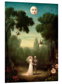 Forex  The moons trousseau - Stephen Mackey