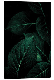 Canvas print  Dark Leaves 1 - Mareike Böhmer