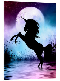 Acrylic print  Unicorn Magic - Dolphins DreamDesign