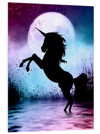 Forex  Unicorn Magic - Dolphins DreamDesign