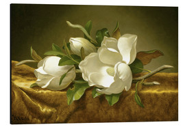 Alu-Dibond  Magnolias on Gold Velvet Cloth - Martin Johnson Heade