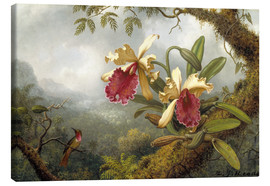 Canvas  orchids and hummingbird - Martin Johnson Heade