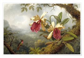 Premium poster Orchids and hummingbird