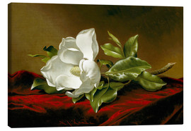 Canvas  Magnolia Grandiflora - Martin Johnson Heade