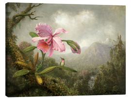Canvas  Orchid and Hummingbird - Martin Johnson Heade