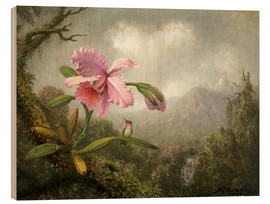 Wood print  Orchid and Hummingbird - Martin Johnson Heade