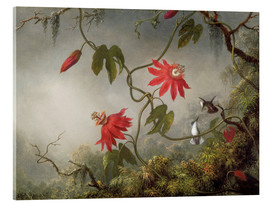 Acrylic glass  Hummingbird on a passion flower - Martin Johnson Heade