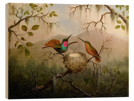 Wood print  Two hummingbirds at their nest - Martin Johnson Heade